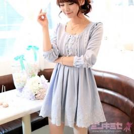 Elegant Lace Embroidered Dress