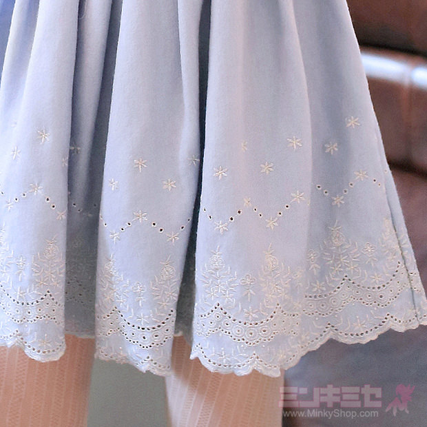 Elegant Lace Embroidered Dress